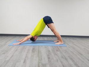 secuencia de yoga asanas hacia delante  callateyhazyoga