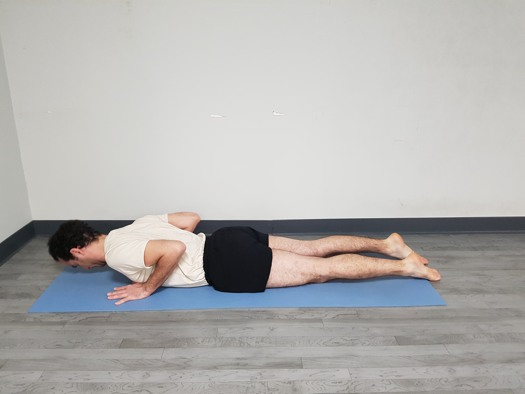 Chaturanga Dandasana postura final