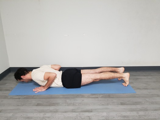 Chaturanga Dandasana postura final 2