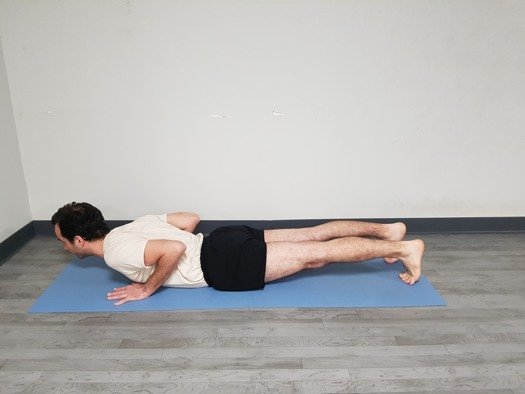 Chaturanga Dandasana postura final 3