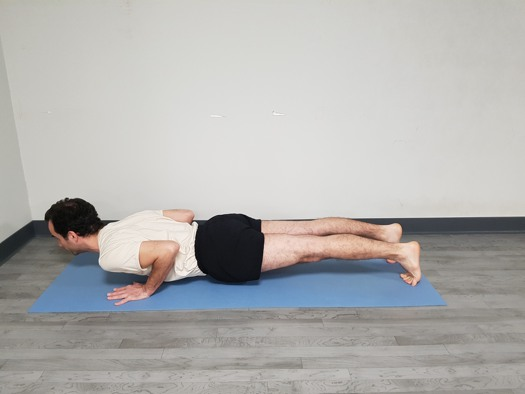 Chaturanga Dandasana postura final 4