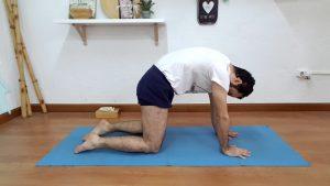 secuencia de yoga 35 posturas para despertar la energía